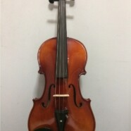 Intermediate-Advanced Violin