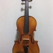 Concert & Master Violin