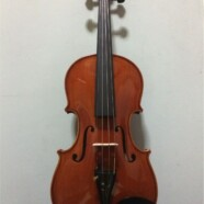 Master & Professionals Violin