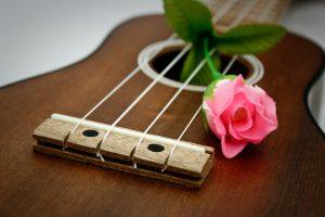 ukulele-rose